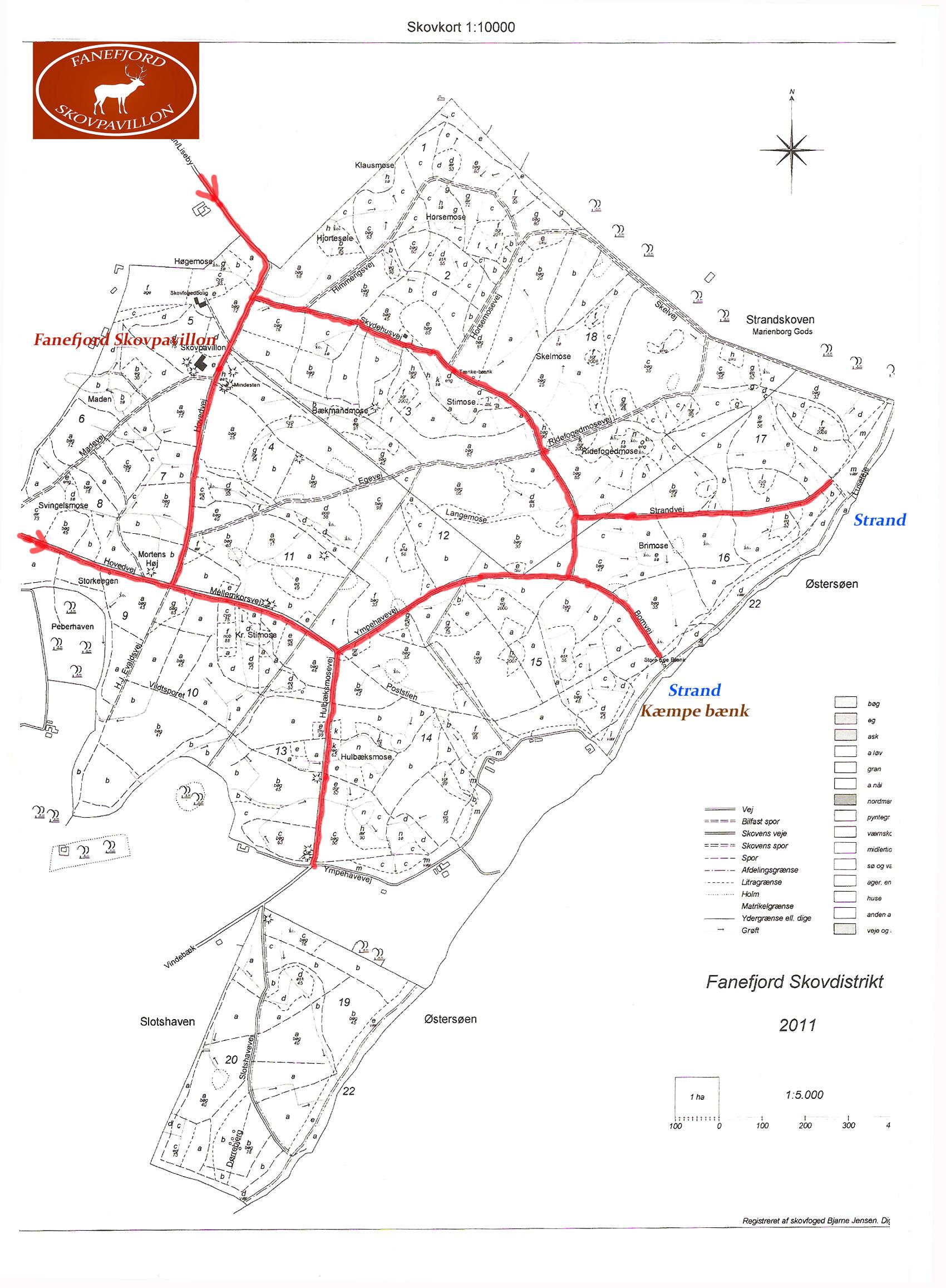 kort over skoven